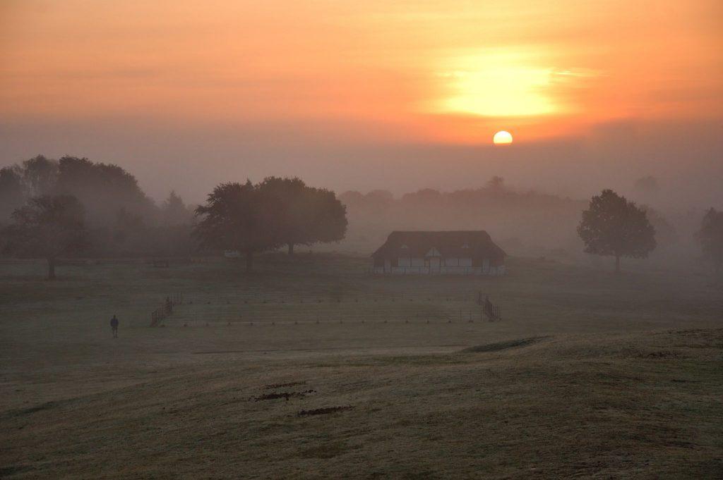 New Forest Sunset Lyndhurst